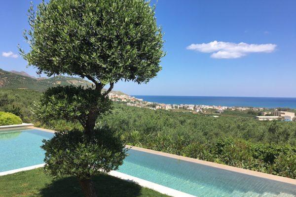 Villa Ianira Infinity Pool